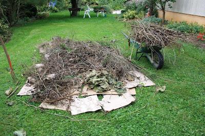 Ledoubsjardindanabel - Quand mettre du fumier de cheval dans le jardin ...