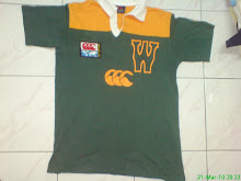 canterbury wallabies australia