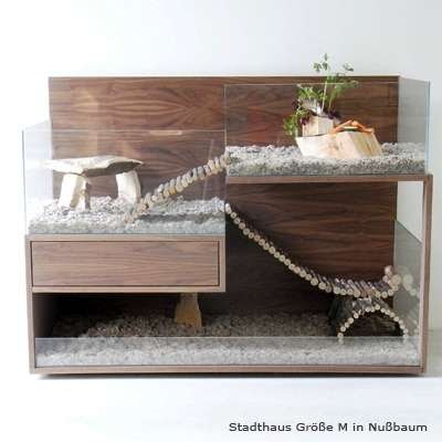 Luxurious Rodent Home Seen On www.coolpicturegallery.us