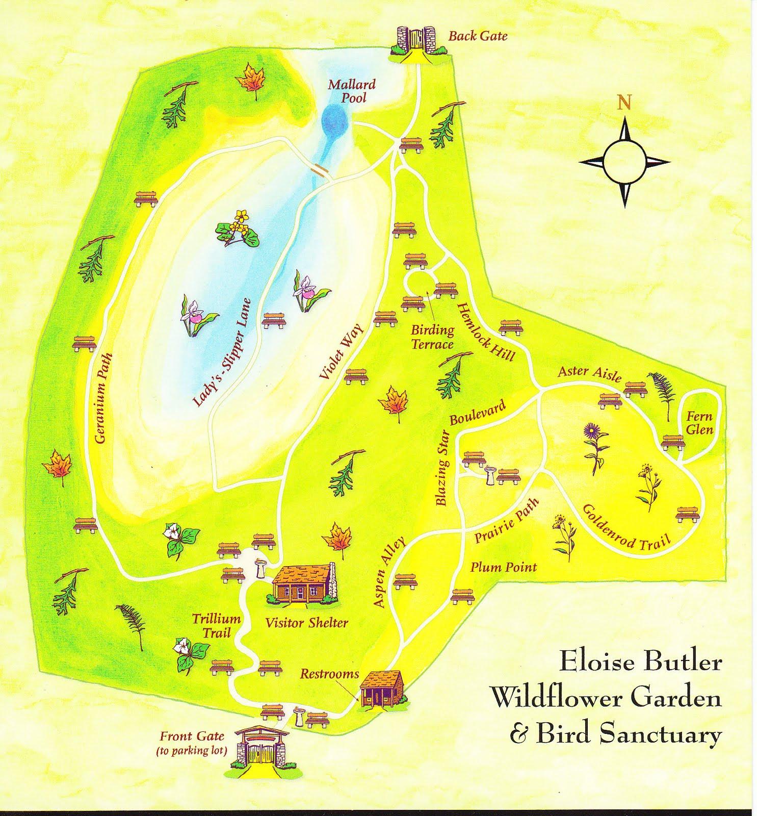 Auntie K 39 S Garden Eloise Butler Wildflower Garden And Bird Sanctuary Field Trip 1