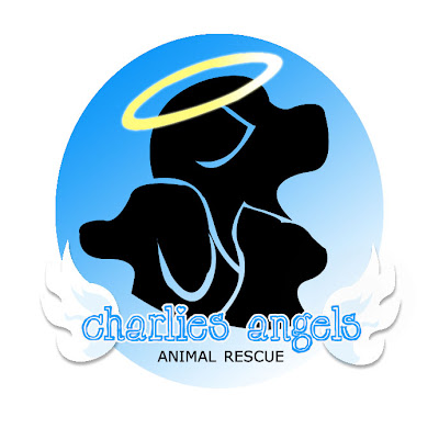 charlies angels logo. Charlie#39;s Angels Animal Rescue