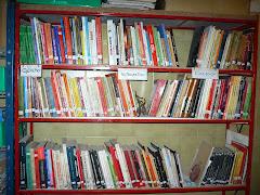 Ya abrieron sus puertas las bibliotecas libre Tintatinto y Tinta Hormiga en Hormiguero Negro