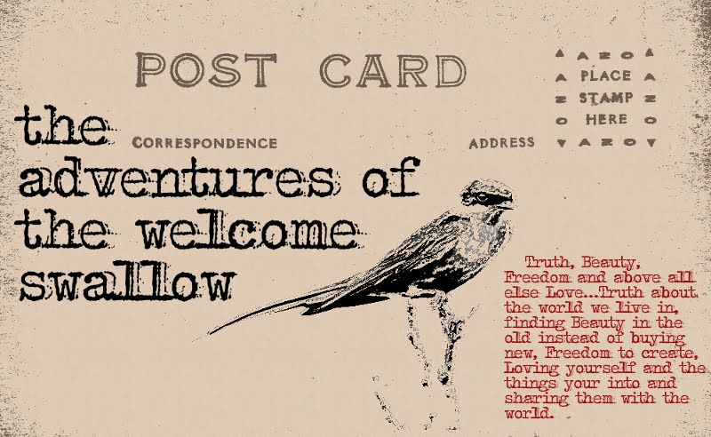 THE ADVENTURES OF THE WELCOME SWALLOW