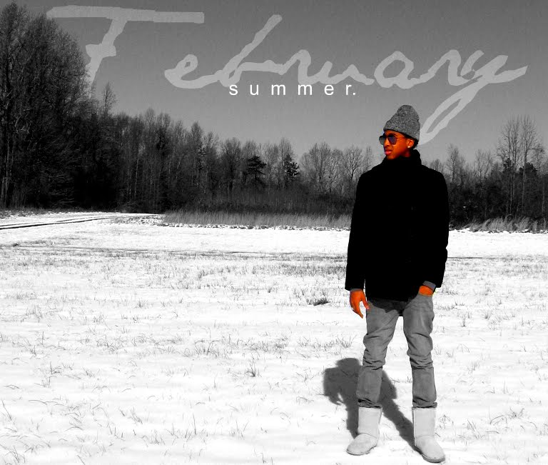 diAry oF a FebRuaRy $ummeR