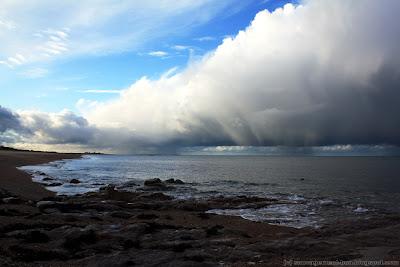 Paysage hivernal du Cotentin