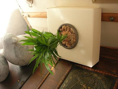 plantas verticales, flower box, tiestos, flores, jardinería