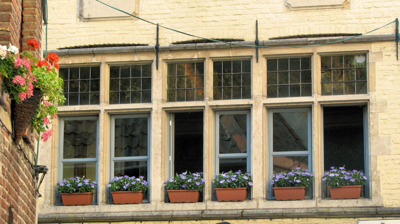 Window boxes are everywhere. I could do ten blog posts