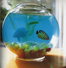 turn a fish bowl blue jello gummy fish shark shaped fruit snacks ...