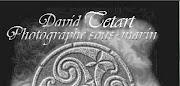 site David Tetart