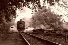 Olha o trem...