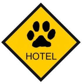 Hospedagem de Cães
