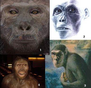 antenati