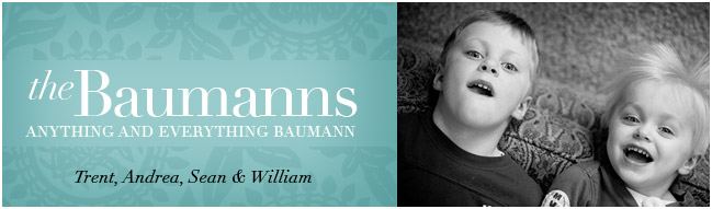 The Baumann Blog