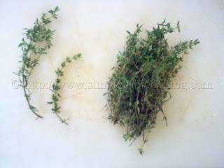 fine leaf thyme