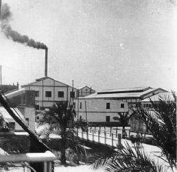 Antigüa fabrica de papel de Isla Mayor en pleno funcionamiento.