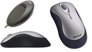 Microsoft Wireless Optical Mouse 2000.