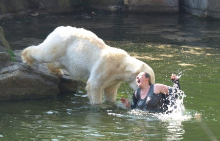 A polar bear attacked a woman 2011
