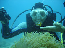 Diving in Tioman