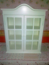 NEW GLASS CABINET (26 inch height x 22 inch length x 9 inch breadth )