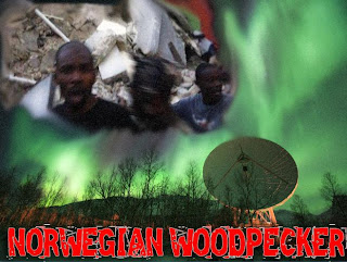 clyde lewis' ground zero media: norwegian woodpecker