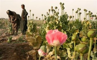 reports link karzai's brother to afghan heroin trade