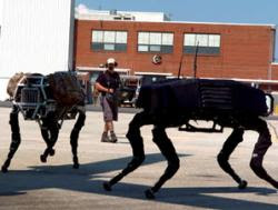 packs of robots will hunt down uncooperative humans