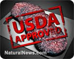 what's really in that burger? e.coli & feces both allowed by usda