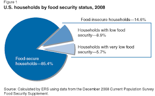 food insecurity: more americans going hungry