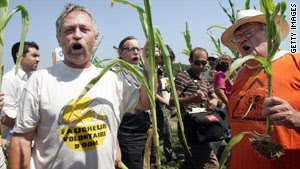 gmo crop sabotage on the rise: french citizens destroy trial vineyard