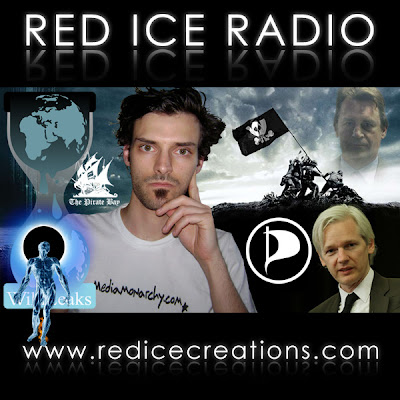 interview w/ red ice radio on wikileaks, assange &amp; the pirate party