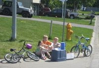 Lemonade Stands in Alaska