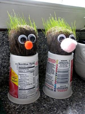 Grow a Head