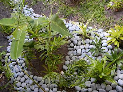 Jardin lilikoi un jardin zen ma fa on - Petit jardin zen interieur la rochelle ...