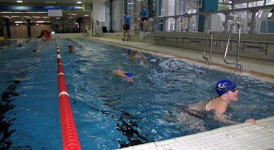 Actualit s mouscron comines swimmarathon la piscine for Piscine des dauphins mouscron