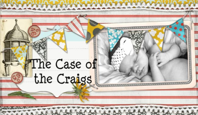 The Case of The Craigs
