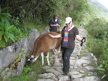 Lena&#39;s Friend on the Inca Trail