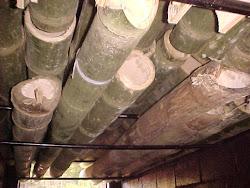 Secando os bambus
