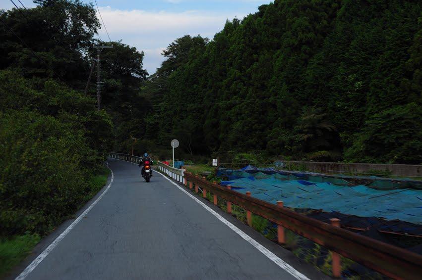 [09-10-伊豆リベンジ++DSC_0240.jpg]
