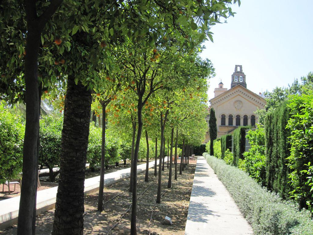 Hablemos de jardines un jardin que me tiene el coraz n for Jardin hesperides