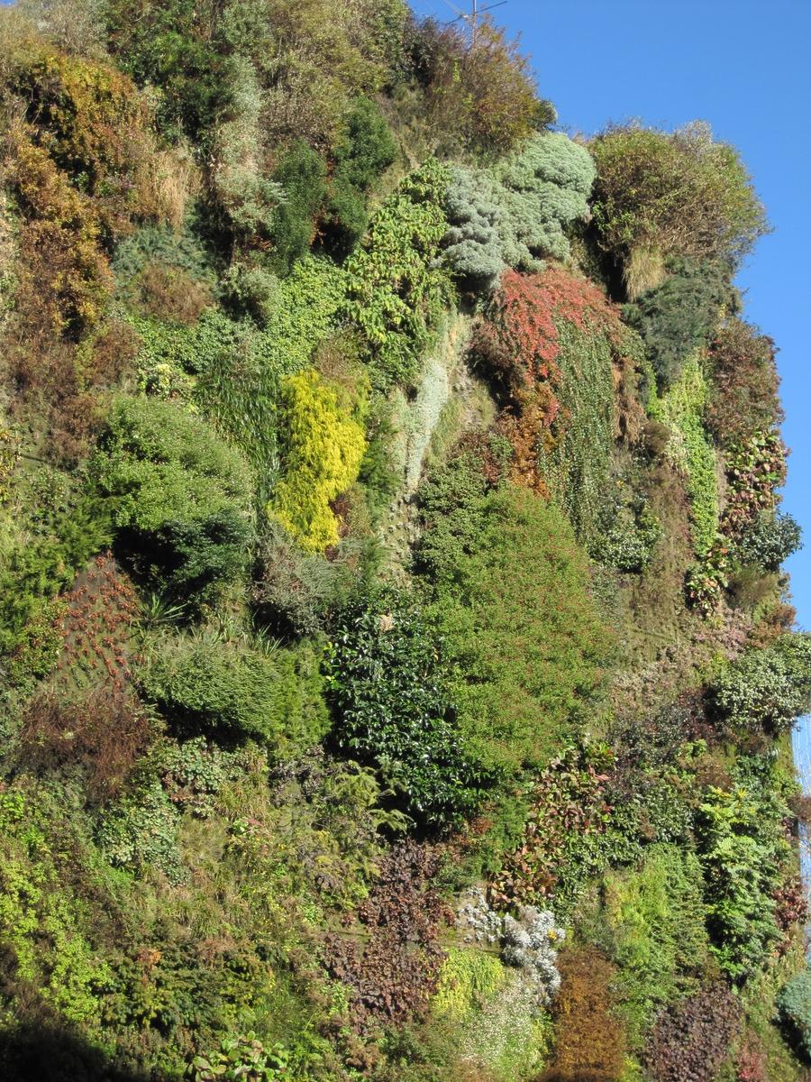 Hablemos de jardines la buena salud del jard n vertical for Jardin vertical caixaforum