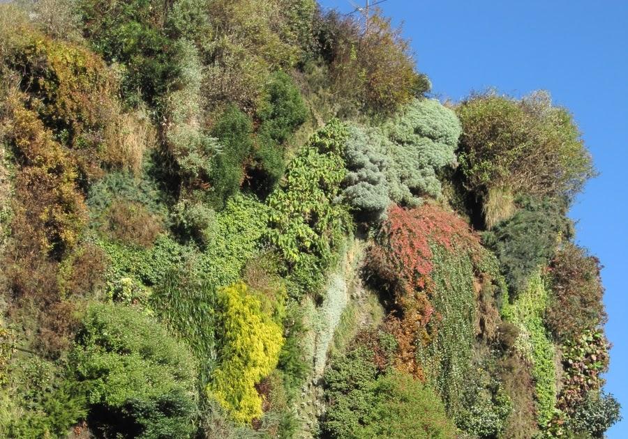 Hablemos de jardines la buena salud del jard n vertical for Jardin vertical caixaforum madrid