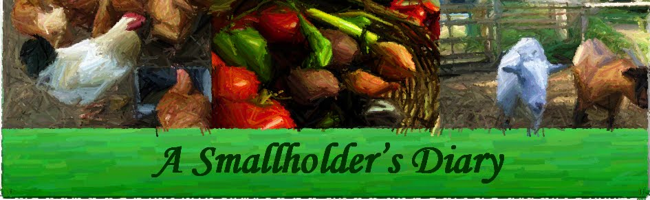 A Smallholder&#39;s Diary