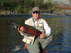 Coho Salmon, WA