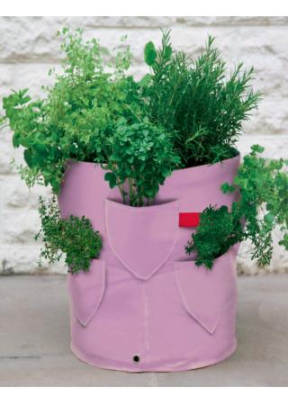 Per chi non vuole usare i classici vasi in terracotta for Vasi per fragole