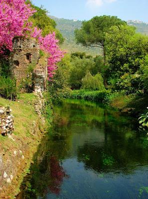 I Giardini Di Ninfa Blossom Zine Blog