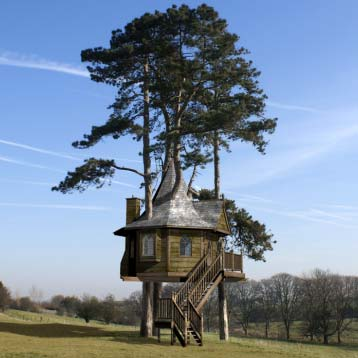 amazon tree houses