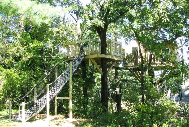 Free Treehouse Plans And Designs Images Frompo