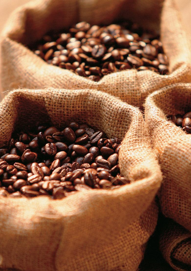 Forexpros cafe verde