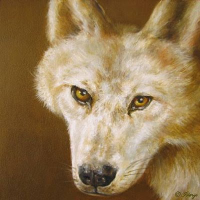 white wolf golden eyes