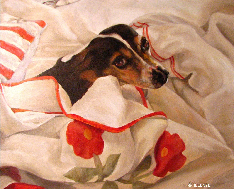 Beagle Boxer Mix Full Grown Buster  a beagle mix whoBeagle Boxer Mix Full Grown